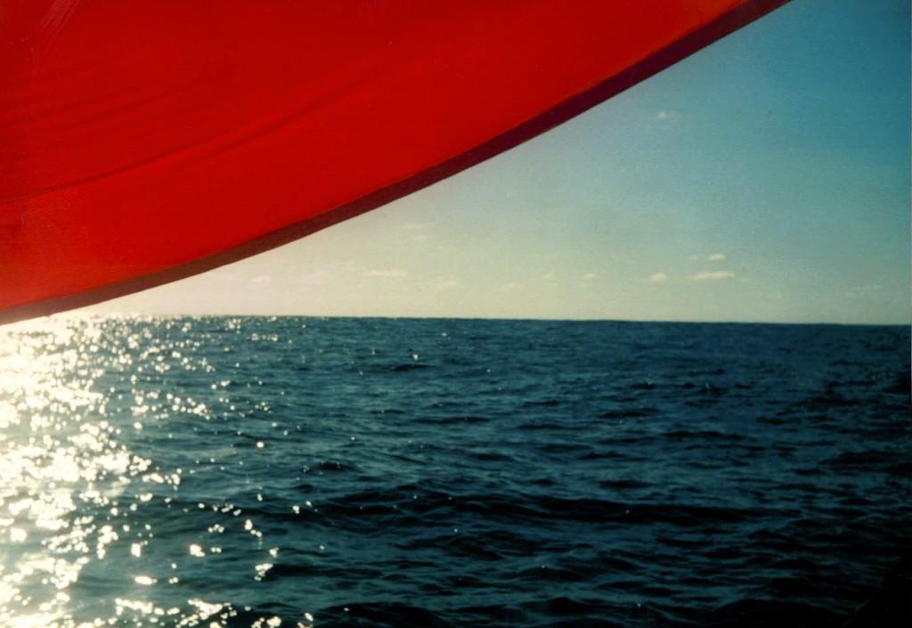 El spinnaker y el horizonte.