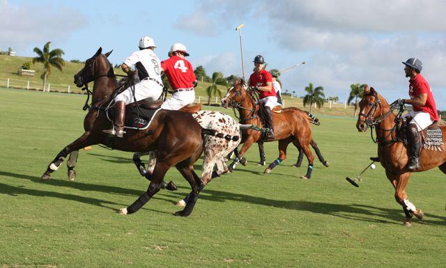 Polo en Barbados